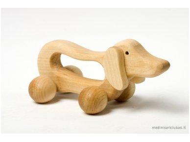 Šuo-masažuoklis