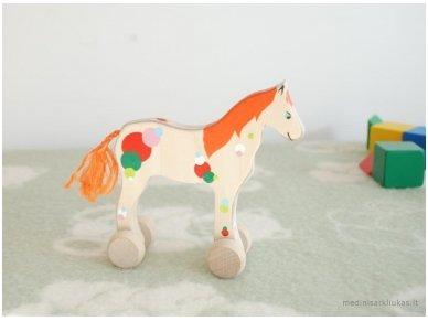Arkliukas su ratukais 3