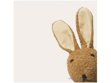 The wellness toy bunny 2