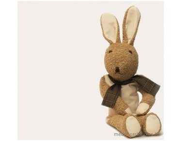 The wellness toy bunny