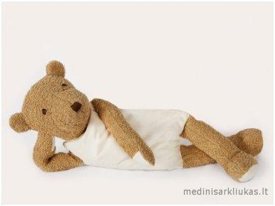 The wellness bear 2