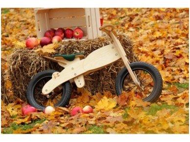 """Balansinis dviratis """"Moto DIP"""" 4"""