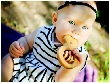 Organic wooden rattle teether 'Ring' 4