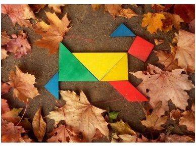 Loginis žaidimas tangrama 8