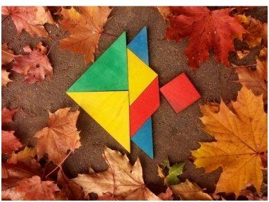 Loginis žaidimas tangrama 6