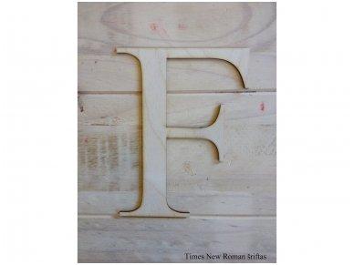 Medinė raidė 12