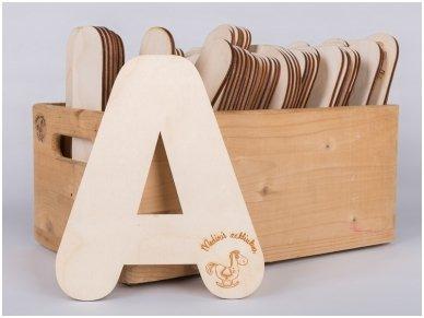 Medinė raidė 10