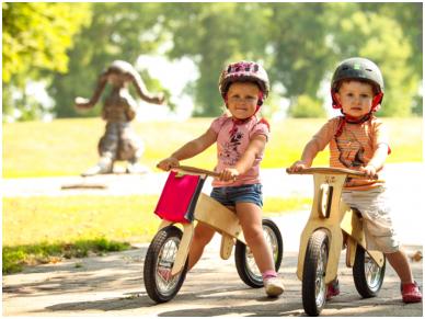Medinis balansinis dviratukas DIP 2