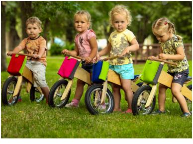 Medinis balansinis dviratukas DIP 6