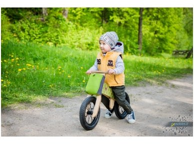 """Medinis balansinis dviratukas """"Žaliosios meškutės"""" 5"""