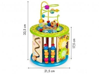 Medinis edukacinis žaislas 6