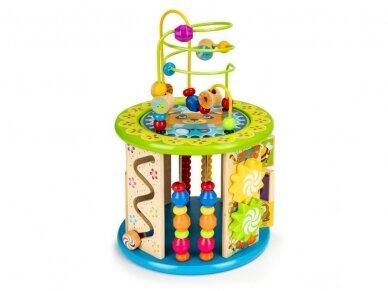 Medinis edukacinis žaislas 2