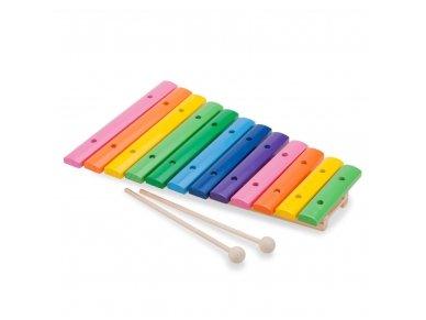 Medinis spalvotas ksilofonas