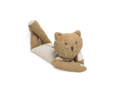 The wellness  brown cat