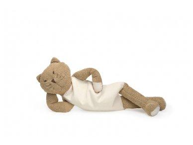 Šildantis žaislas rudasis katinas Čiobrelis 2