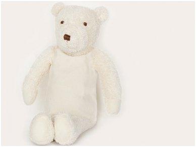 The wellness bear 4